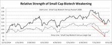 Small/Micro Cap Biotechnology: Still Richly Valued